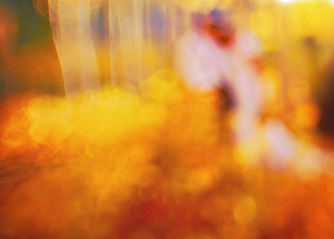 wedding abstract fall